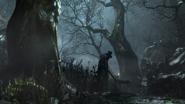 禁域の森1.jpg